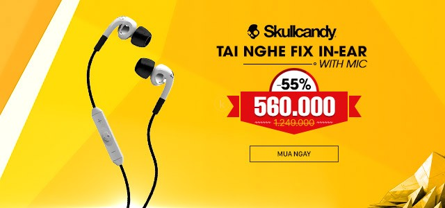 SKULLCANDY - FIX IN-EAR / Mic